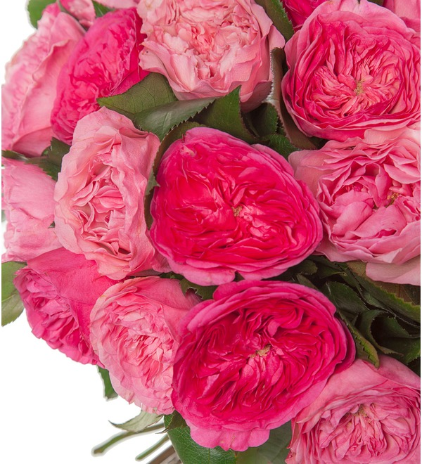 Bouquet of peony roses Splendor (15, 25 or 51) – preview #2