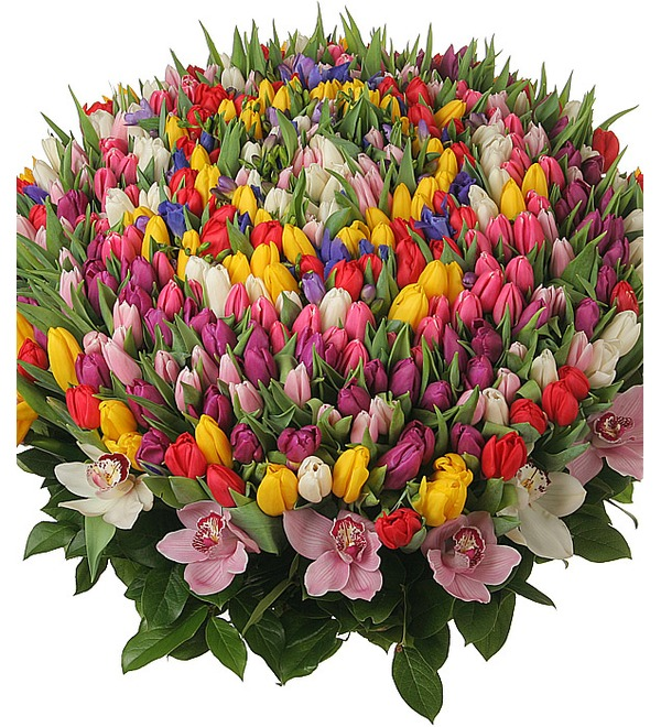 Composition of 301 tulips Happy Spring – photo #5