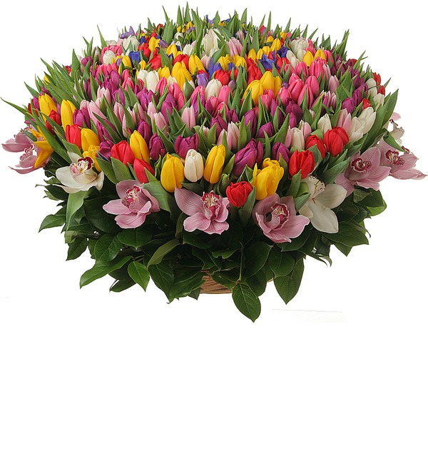 Composition of 301 tulips Happy Spring – photo #4