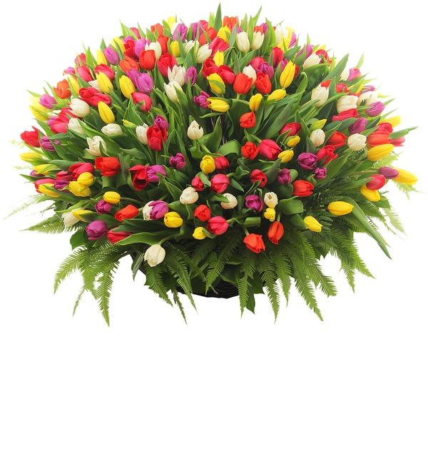 Композиция Подари улыбку! (251 тюльпан) – фото № 2