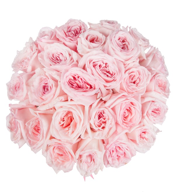 Bouquet of fragrant peony roses Pink O Hara – photo #3