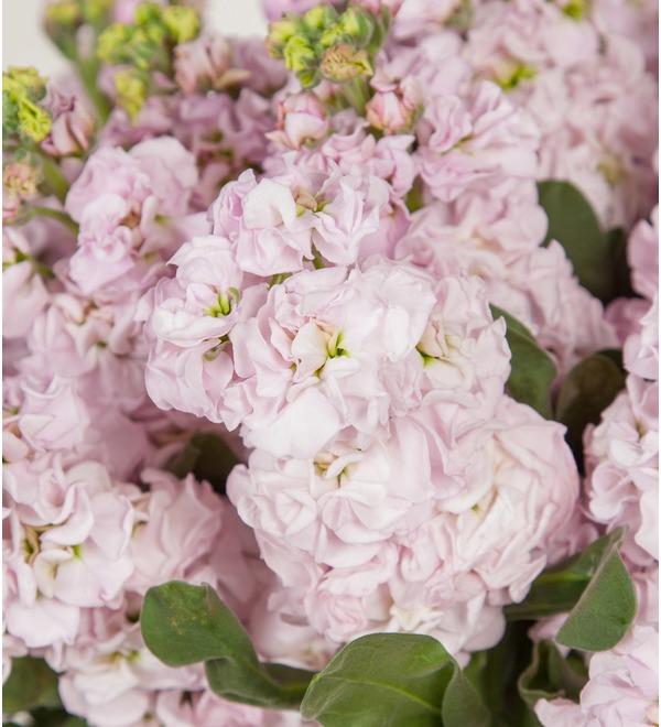 Букет-соло нежно-розовой маттиолы (15,25,35,51 или 75) – фото № 3