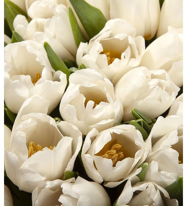 Букет-соло Белые тюльпаны (15,25,35,51,75,101 или 151) – фото № 2