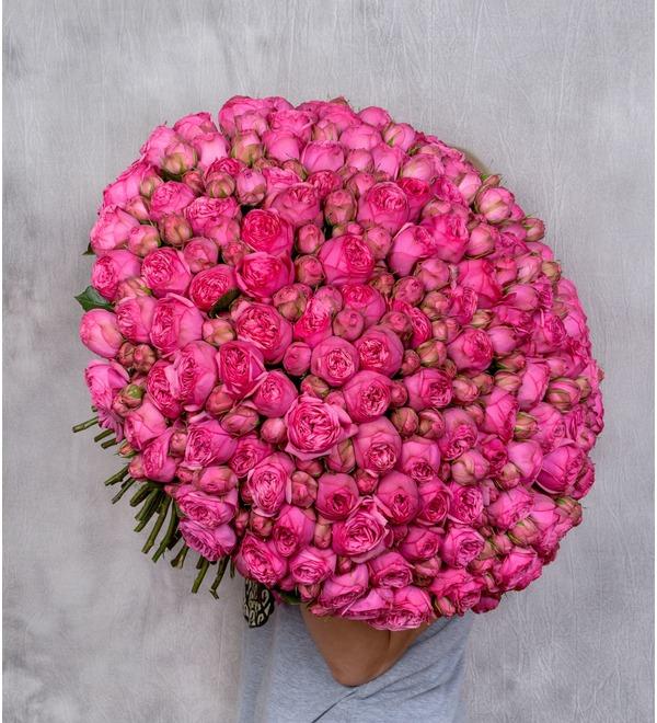 Букет из 151 пионовидной розы Pink Piano SPBWOW39 SAN – фото № 1