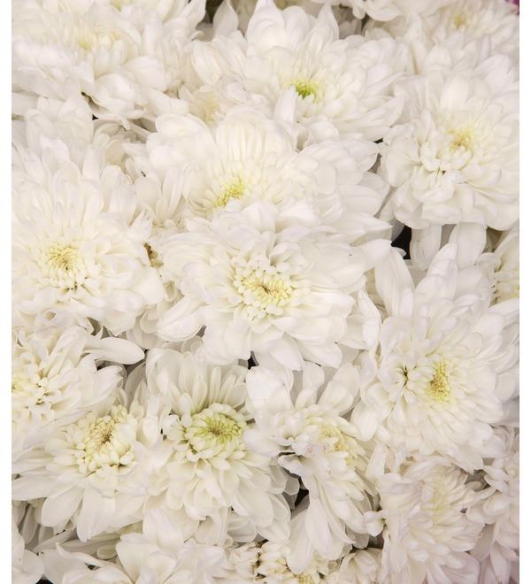 Букет-соло белых хризантем (9,15,25,35,51,75 или 101) – фото № 3