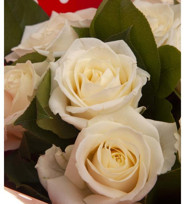 Букет-соло белых роз (9,15,25,35,51,75 или 101) – фото № 2
