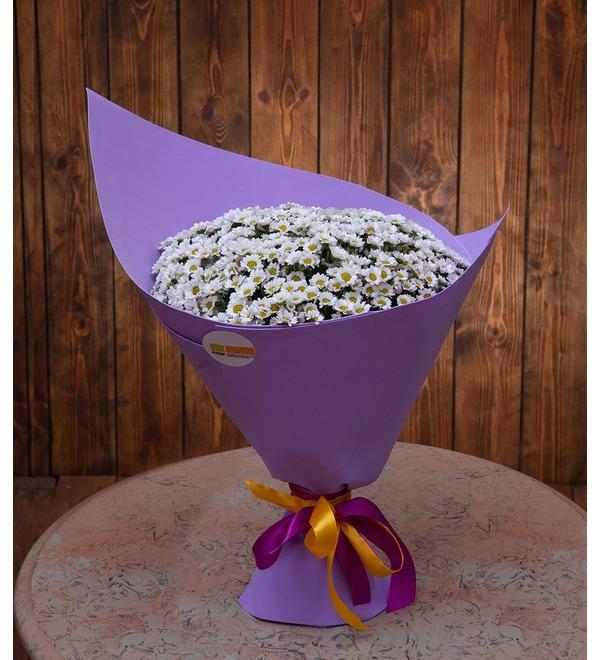 Букет-соло белых хризантем Сантини (15,25,35,51,75 или 101) – фото № 1