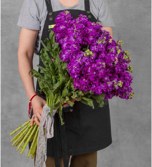 Букет фиолетовой маттиолы (15, 25 или 51) – фото № 1