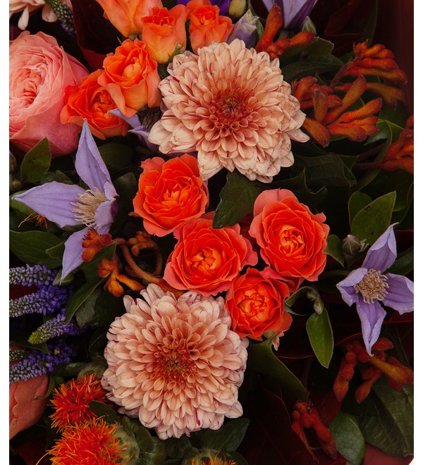 Bouquet-orchestra Vocal Image – photo #3