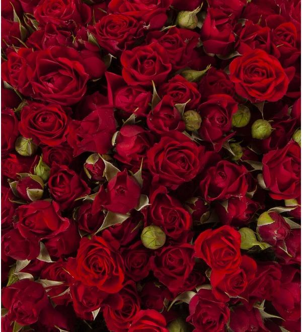 Букет-соло Красные кустовые розы (15,25,35,51,75 или 101) – фото № 2