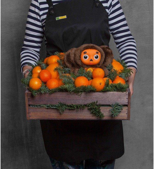 Подарочное кашпо Посылка с апельсинами – фото № 1