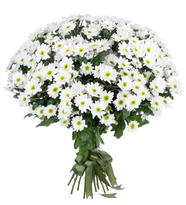 Букет-соло Белые хризантемы (15,25,51 или 101) – фото № 1