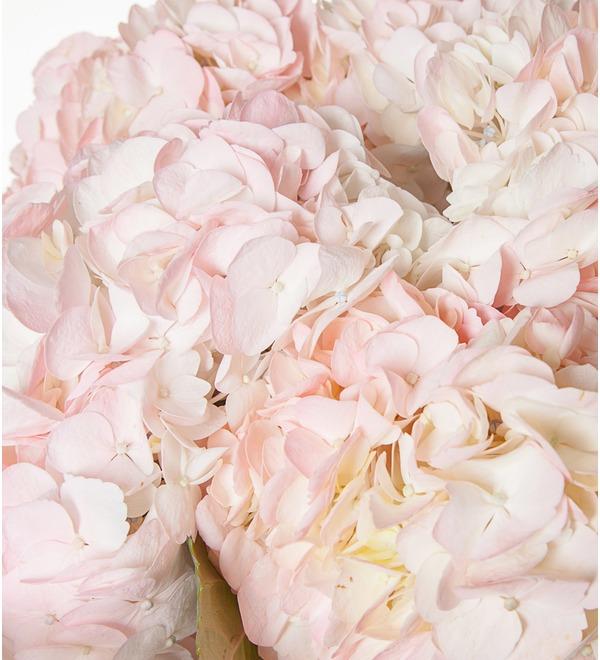 Букет розовых гортензий (5, 7 или 9) – фото № 3