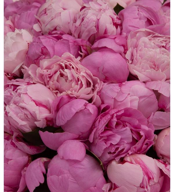 Букет-дуэт Розовые пионы (15,25,35,51,75,101 или 151) – фото № 2