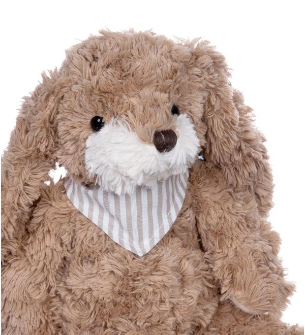 Мягкая игрушка Заяц Габби (23 см) – фото № 3