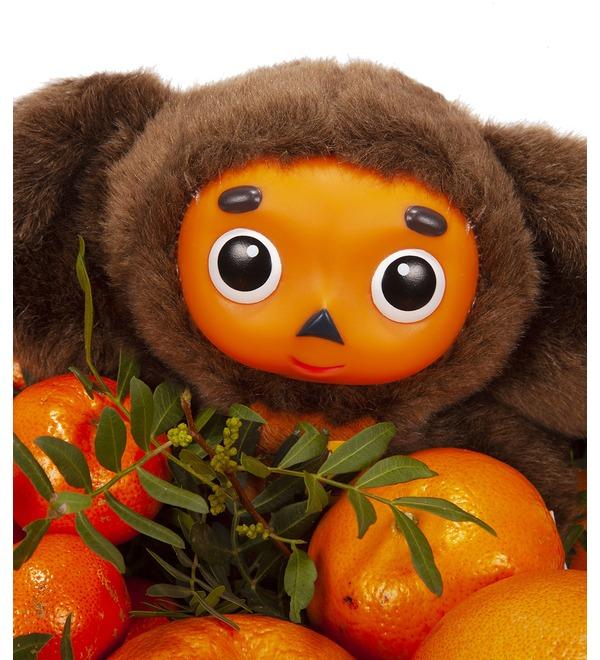 Подарочное кашпо Посылка с апельсинами – фото № 3