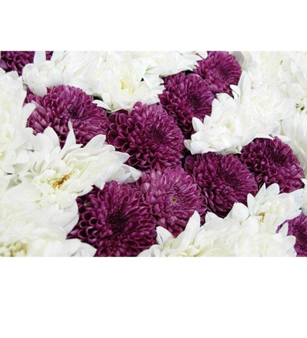 Любое ваше слово из цветов! Хризантемы. – фото № 2