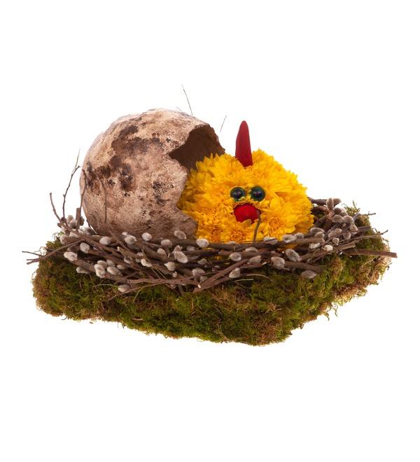 Композиция Цыплёнок – фото № 4