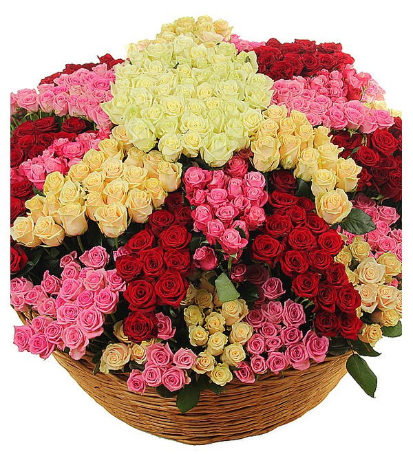 Composition Star flower of happiness (801 roses) – photo #2