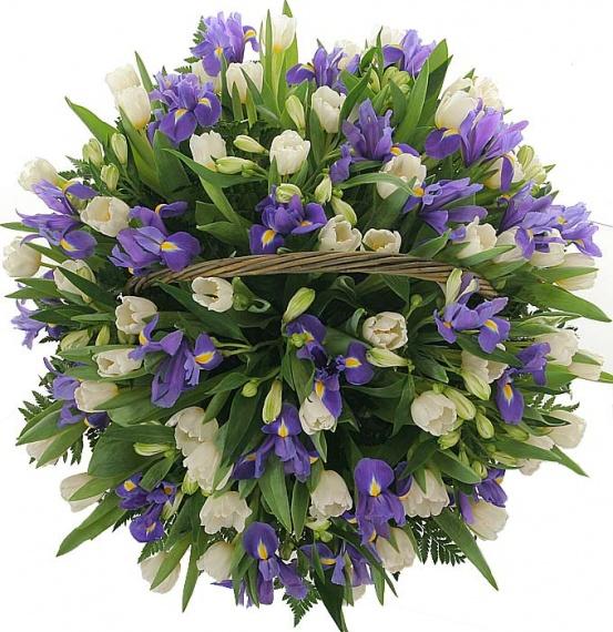 http://www.sendflowers.ru/images/flowers/sendflowers2/small/500x570x0x0x95_8b8edf40193454e52378ceee32abee86.jpg
