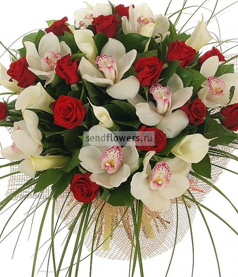 http://www.sendflowers.ru/images/flowers/sendflowers2/small/500x570x0x0x95x1_4239d848248a4611fc982772fe4432e5.jpg
